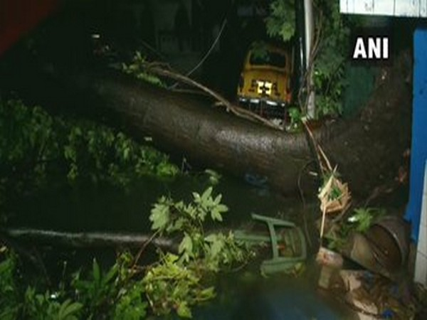 Power cuts were reported in some areas of Kolkata following heavy rain and strong winds due to the cyclone. Photo/ANI