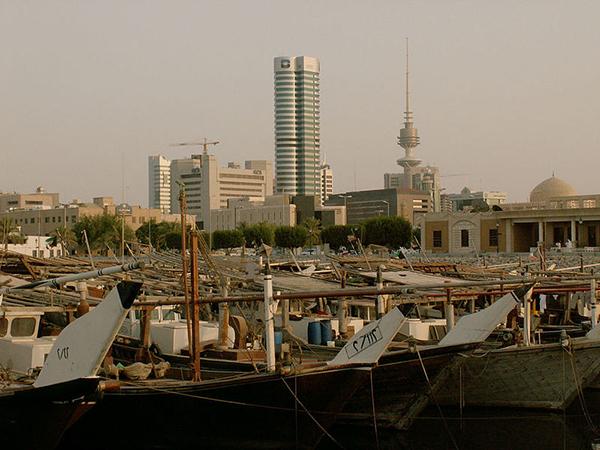 Egypt to resume Arabian horses exportation to Kuwait