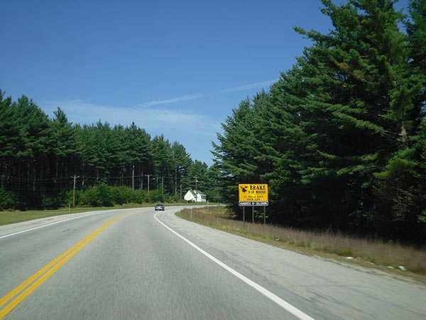 New Hampshire highway collision leaves 7 motorcyclists dead, 3 injured