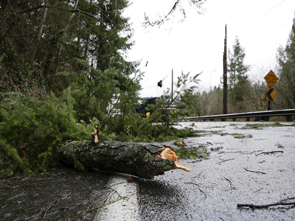 Northwest Storm Causes Damage, Road Closures in Washington; 1 Killed in British Columbia