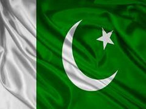 Missing Pakistani journalist, who had footage of Safdar's arrest, returns home