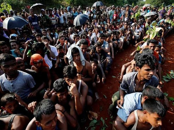 Probe Myanmar military leaders over Rohingya issue: UN