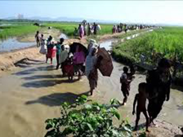 Are all Rohingyas converging on Bangladesh?