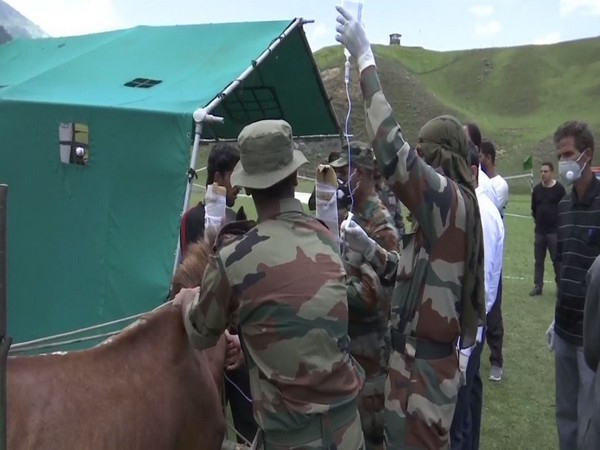 Indian Army organises free veterinary camp at Kupwara's Bangus valley