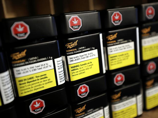 Calgary wants more revenue from cannabis legalization