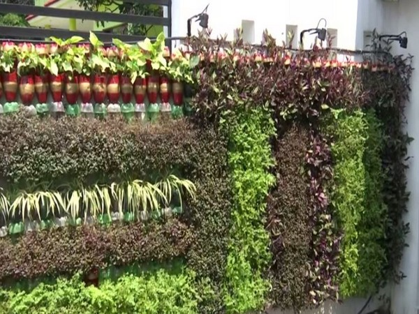 Environmentalist in Jammu creates vertical gardens using plastic bottles