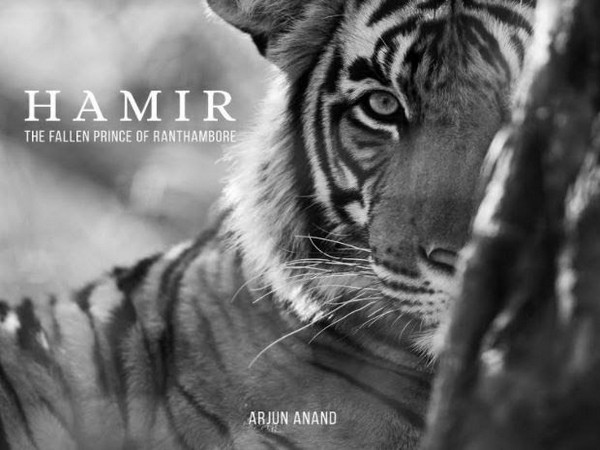 Arjun Anand launched his maiden book Hamir - The Fallen Prince of Ranthambore