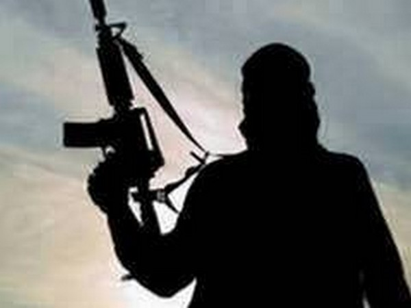 Top LeT commander among two terrorists killed in Pulwama: J-K police