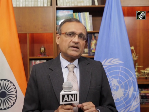 Pakistan's attempts to involve UN in J&K issue has not borne fruit: India's representative to UN