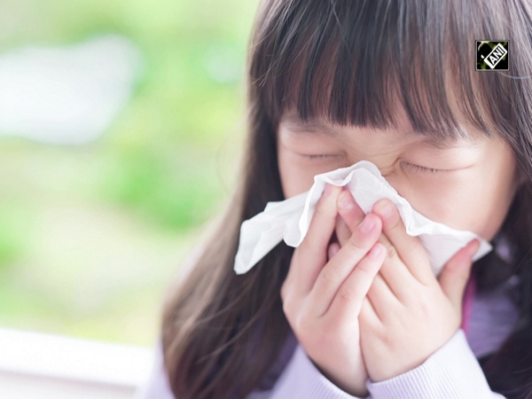 Study finds common cold combats influenza