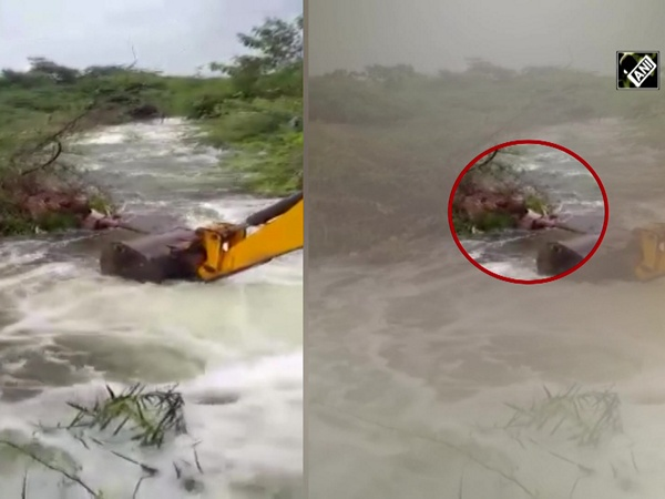Home Guard rescues dog from overflowing tank bund in Telangana's Nagarkurnool