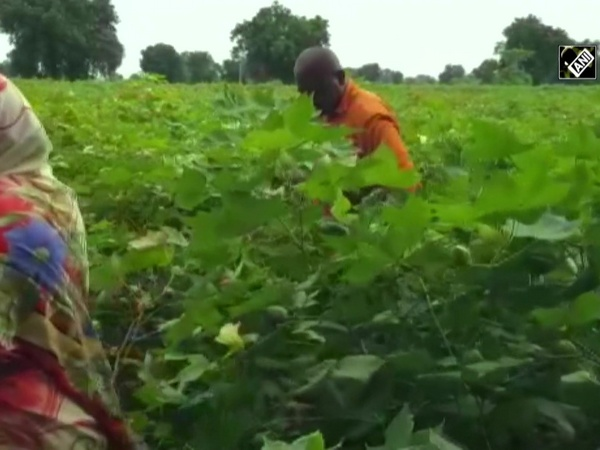 Farmers in Maharashta's Dhule welcome Centre's farm bills