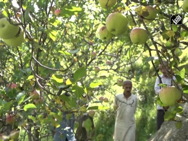 Udhampur-based farmers hail farm reform bills passed in Parliament