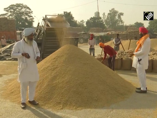 Paddy procurement begins in Punjab