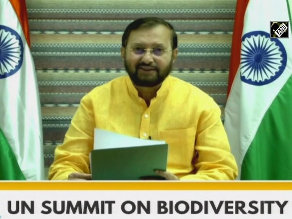 COVID emphasized that exploitation of natural resources lead to destruction of system: Javadekar