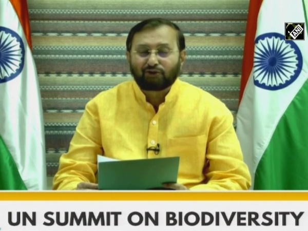UN Biodiversity Summit: India to restore 26mn hectares of deforested land by 2030, says Javadekar