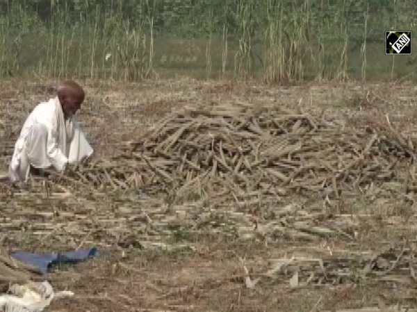 'Will be able to sell produce directly,' Agra farmers heap praise on new agri reforms