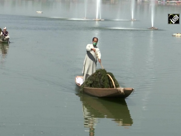 Massive cleaning drive on Dal Lake underway ahead of winter tourism