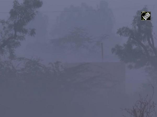 Shallow fog envelopes Delhi-Haryana border