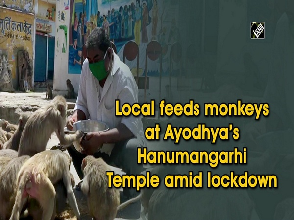 Local feeds monkeys at Ayodhya's Hanumangarhi Temple amid lockdown