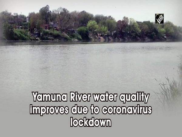 Yamuna River water quality improves due to coronavirus lockdown