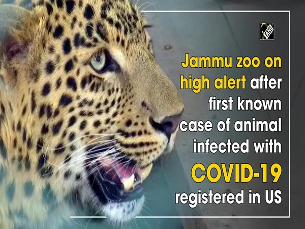Jammu zoo on high alert after first known case of animal infected with COVID-19 registered in US