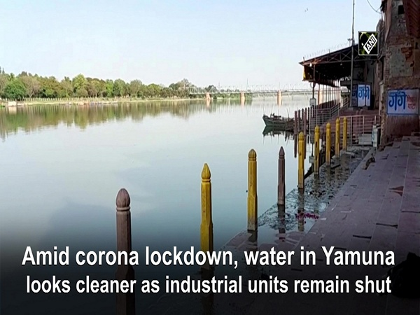 Amid corona lockdown, water in Yamuna looks cleaner as industrial units remain shut