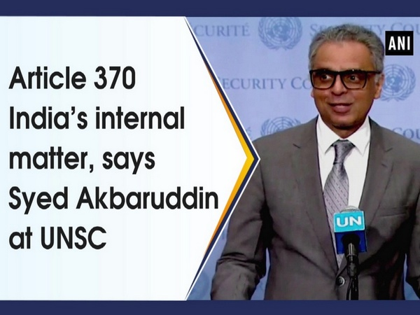 Article 370 India's internal matter, says Syed Akbaruddin at UNSC