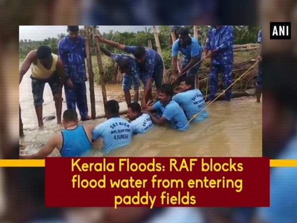 Kerala Floods: RAF blocks flood water from entering paddy fields