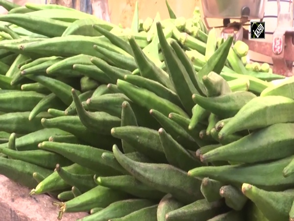 Vegetable prices soar up due to rainfall in Gorakhpur
