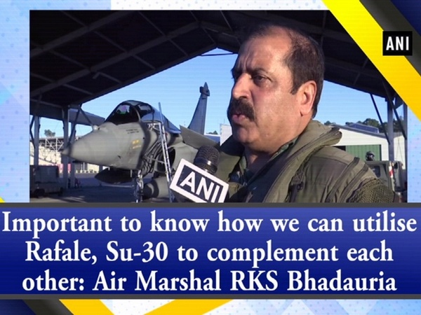 Important to know how we can utilise Rafale, Su-30 to complement each other: Air Marshal RKS Bhadauria