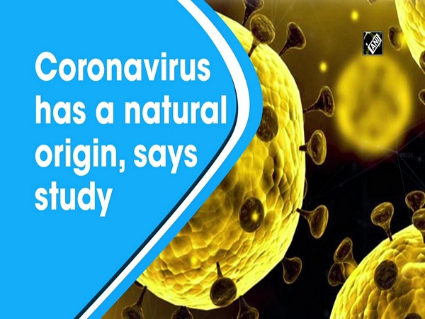Coronavirus has a natural origin, says study