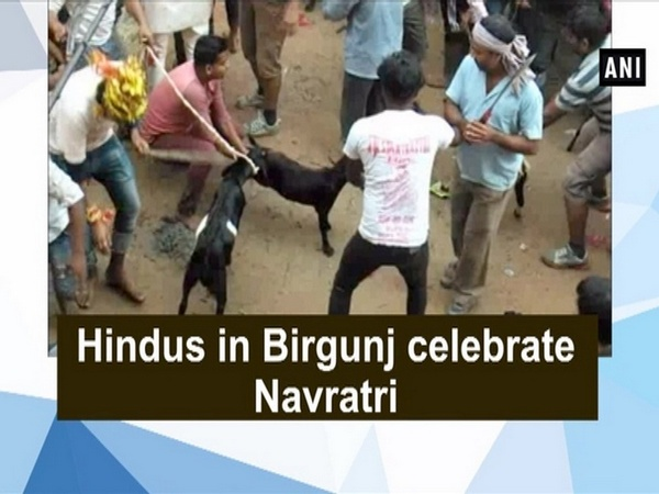 Hindus in Birgunj celebrate Navratri