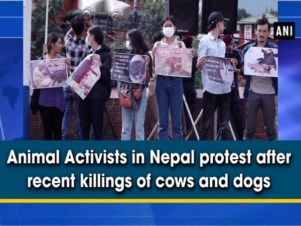 Animal Activists in Nepal protest after recent killings of cows and dogs