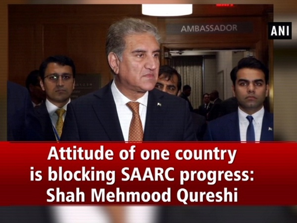 Attitude of one country is blocking SAARC progress: Shah Mehmood Qureshi